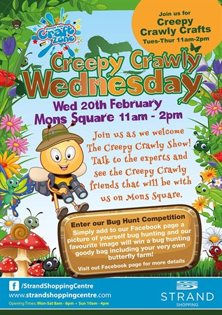 Creepy Crawly Wednesday this February half term